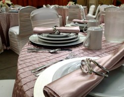 Colasanti's Evening Event - Bridal Shower