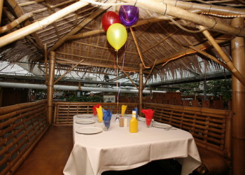 Colasanti's Birthday's - Tiki Hut