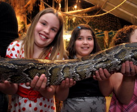 Colasanti's Tropical Gardens Animal Encounter Shows