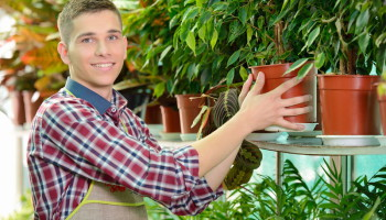 Colasanti's Tropical Gardens Retail Plants