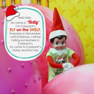 Holly - Colasanti's Elf On The Shelf