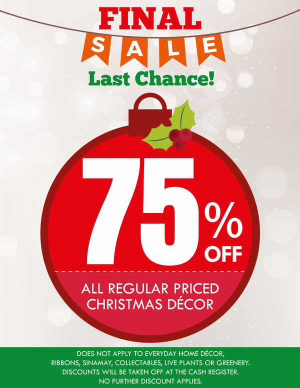 Final Christmas Sale 75% OFF