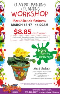MARCH BREAK MADNESS Clay Pot Painting Class