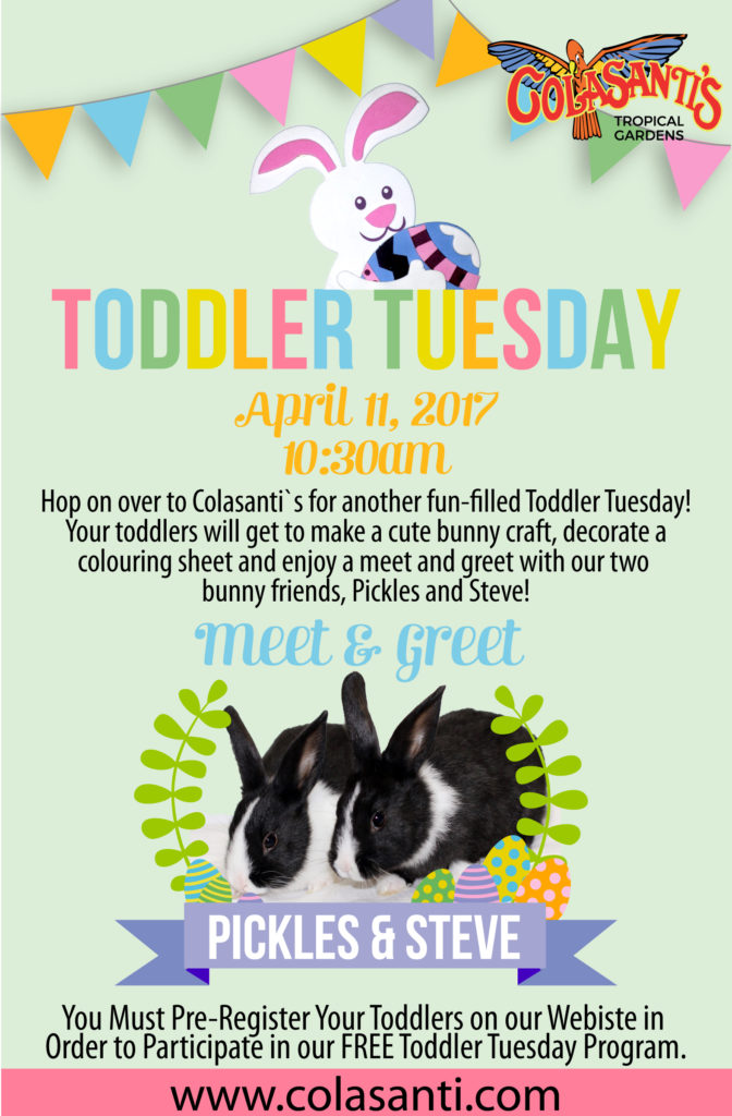 Toddler Tuesday at Colasanti's