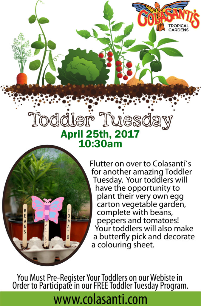 April 25 Toddler Tuesday at Colasanti's