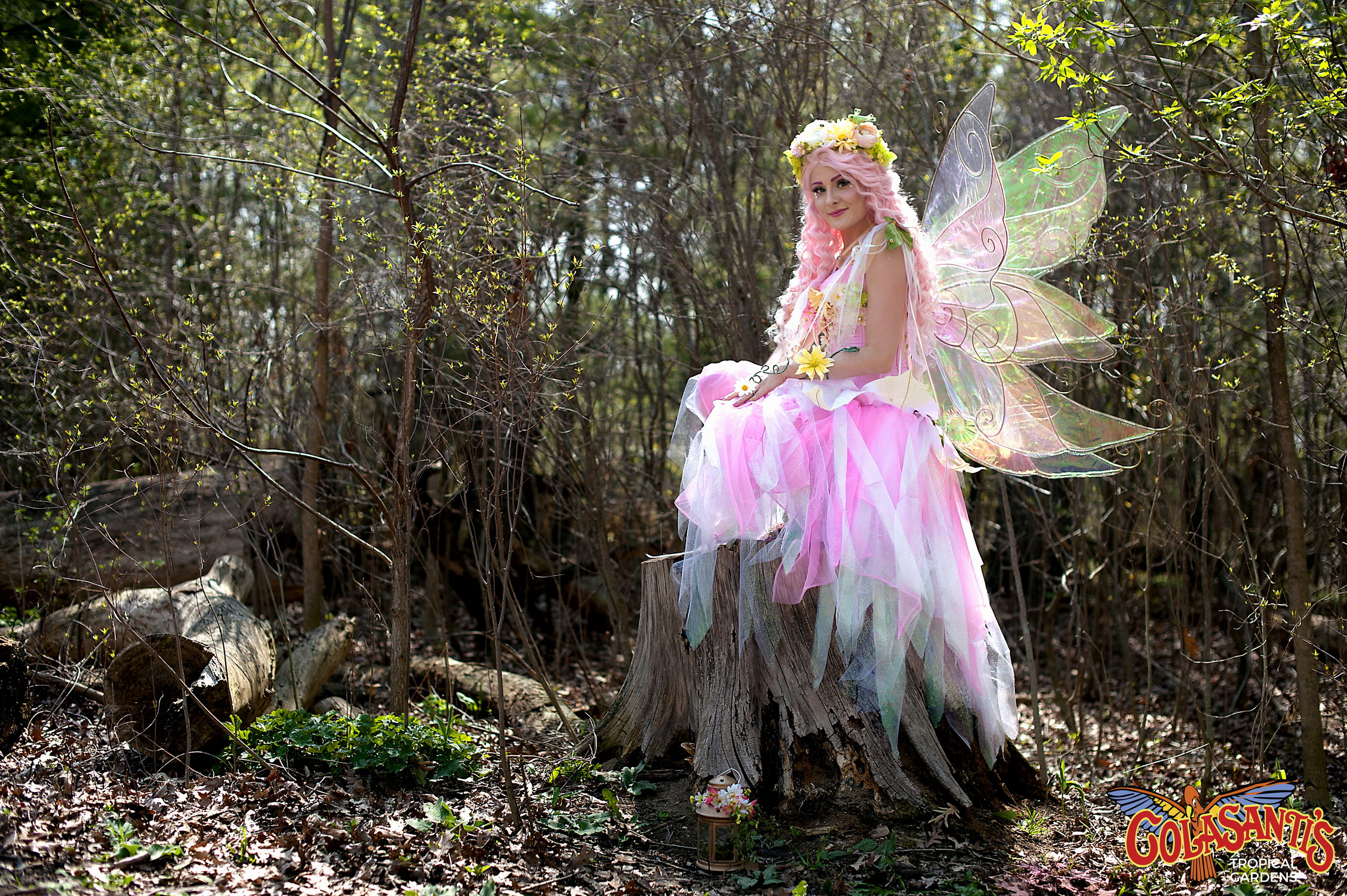 Colasanti's fairy Adventure Day