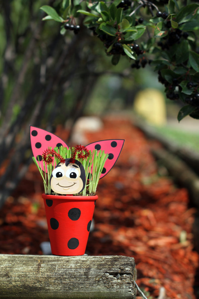 Get Your Craft On Ladybug Clay Pot
