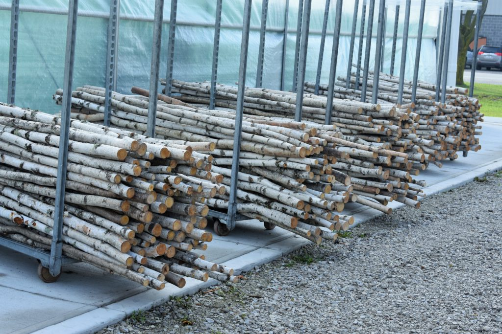 Birch Branch Poles at Colasanti's. GREAT prices.