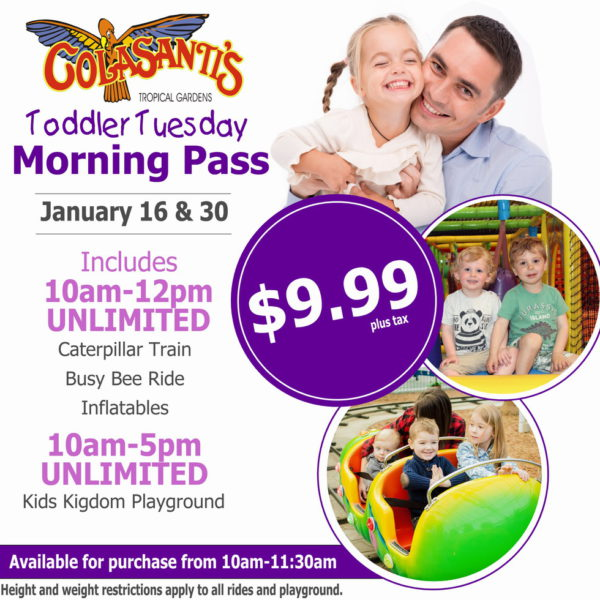 Colasantis Toddler Tuesday Morning Pass