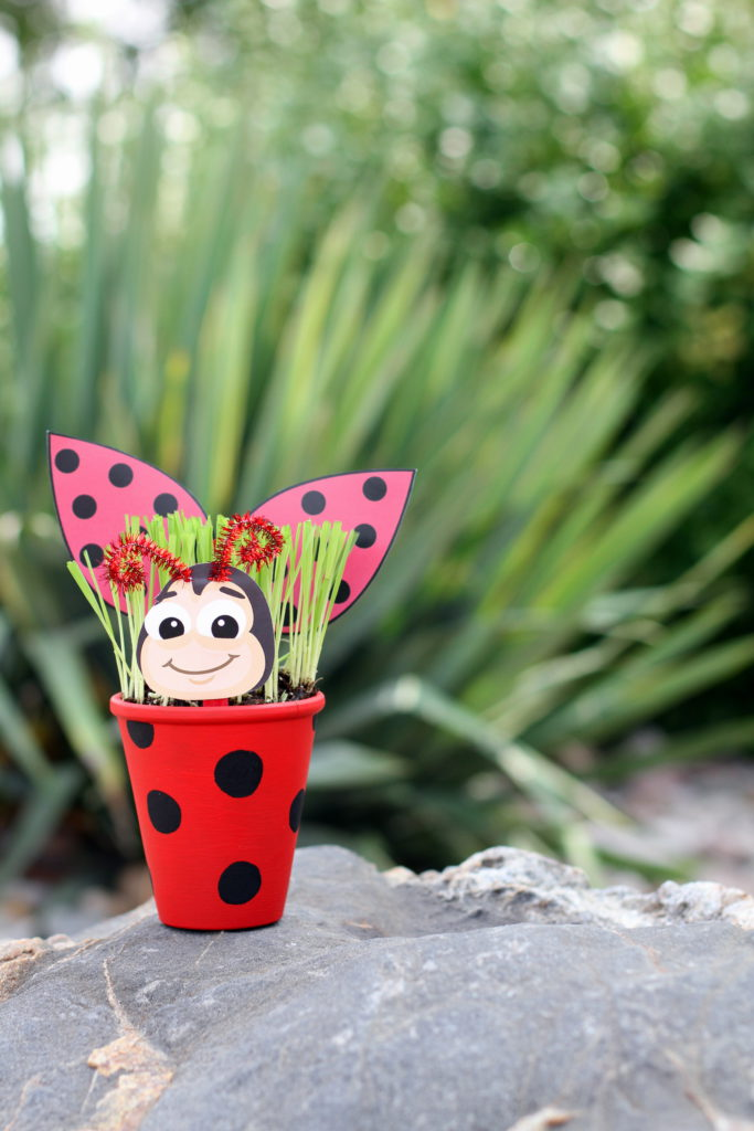 Colasantis Get Your Craft On Lady Bug
